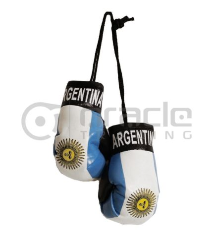 Argentina Boxing Gloves