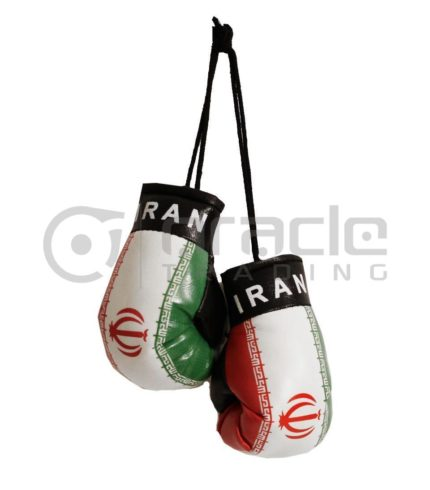 Iran Boxing Gloves