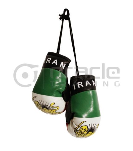 Iran Boxing Gloves - Lion