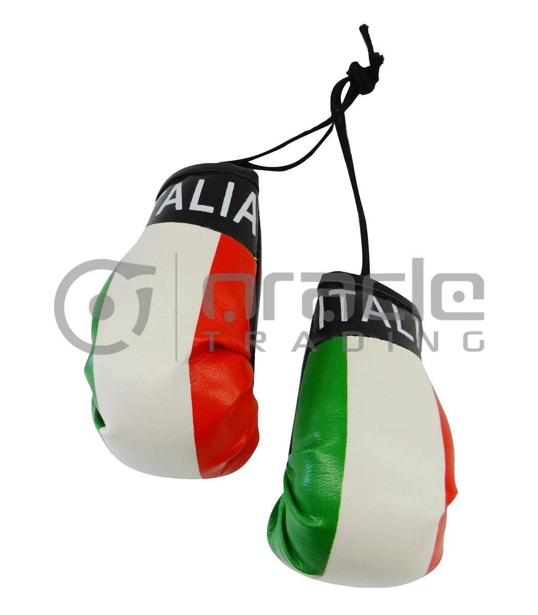 Italia Boxing Gloves